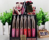 Long Lasting Lipstick
