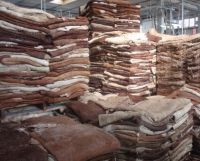 Wet Salted & Dry Salted Donkey Hides and Cow Hides, cattle Hides, animal skin, Goats, Horses