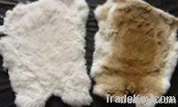 tanned rabbit skin