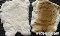 tanned rabbit skins