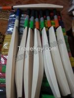 Plain Grade A English Willow Cricket Bat