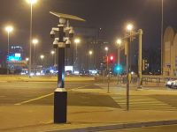 Phone Violation & Pedestrian Crossing Camera