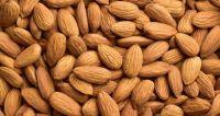 High-Quality Nutrition High Almond Nut