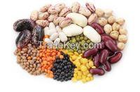 Beans, Legumes, Rice