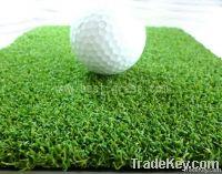 Golf putting grass/turf/lawn