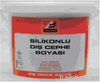 Silicone enhanced exterior paint