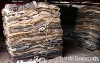 Wet Salted Cow Skin & Dry Raw Cow Hides