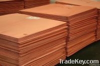 Copper Cathode GradeA, 99.99%