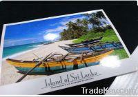 printing card