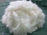 PP staple fiber