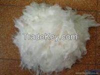 Polypropylene Fiber (PPF)