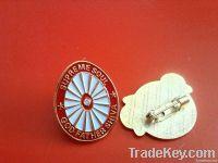 badges pins