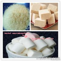 Marshmallow gelatin powder
