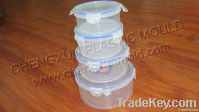 household mould/container mould/thin wall mould/transparent container/