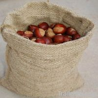 chestnut :  fresh , frozen, diced  chestnut