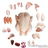 Chicken Parts & Whole Chicken Branded U-Globe