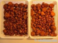 Cattle Gallstones/Ox Gallstones
