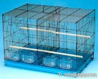 metal wire bird cage (factory)