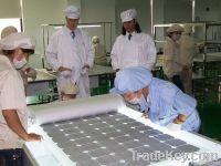 High quality Poly solar