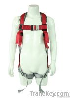 Full Body Harness with