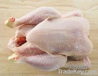 Export Chicken Meat   Chicken Meat Suppliers   Poultry Meat Exporters   Chicken Pieces Traders   Processed Chicken Meat Buyers   Frozen Poultry Meat Wholesalers   Halal Chicken   Low Price Freeze Chicken Wings   Best Buy Chicken Parts   Buy Chicken Meat  