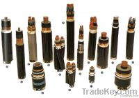 PVC insulated Sheathed Power cable