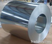 GI / Galvanized Steel Coils