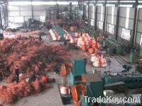 Red Copper Scrap | Iron Scrap | Papers Scrap | Gold Bars | Batteries | Zinc