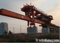 Gantry Cranes(900 Tons)