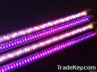 T8 LED grow light