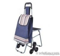 portable and foldable supermarket shopping cart