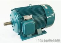 Induction Motor (3 Phase)