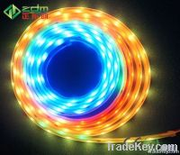 Silicon Waterproof (IP67) 12V SMD5050 LED Flexible Strip Light 5m/Roll