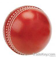 Cricket Hard Balls