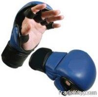 MMA Gloves & Rash