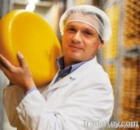 Gouda And Edam Cheese For Sale