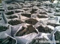 BBQ Charcoal | Exporter - Bulk - Best Price
