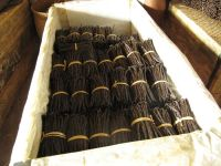 Vanilla beans from Madagascar type Bourbon vanilla
