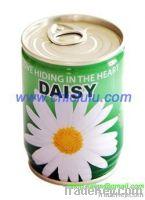 mini flower in tin can