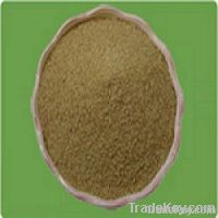 Allicin 25% Powder