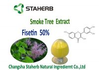 Cotinus coggygria Extract --- Fisetin 98