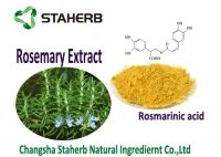 Rosmarinic acid 5-98% Rosemary leaf extract