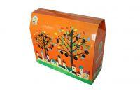 Corrugated paper color box