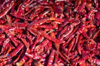 2020 New Crop Food Grade Dried Red Chili
