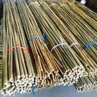 Tonkin Natural Bamboo Cane