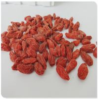 For Sale Bulk High Quality Ningxia Goji berry