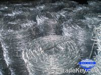 Electric galvanized barbed wire pvc coated barb