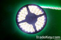 LED hose lamp, strip light, SMD5050, SMD3528