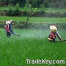 Pesticide powder