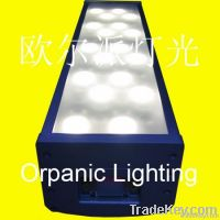 LED 72x3W all white wall wash outdoor